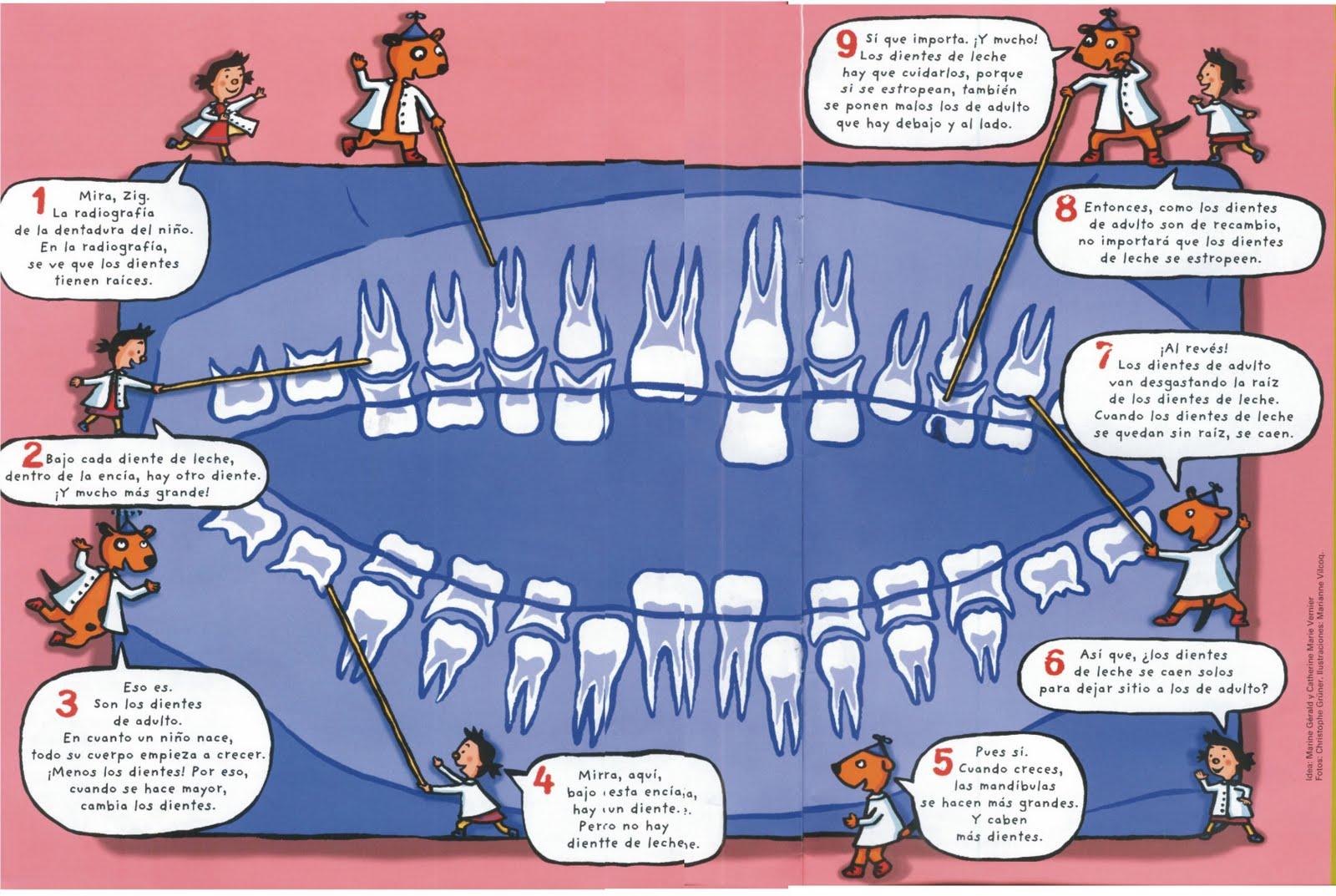 Eventos clinica dental en castelldefels for Suelo que se me caen los dientes